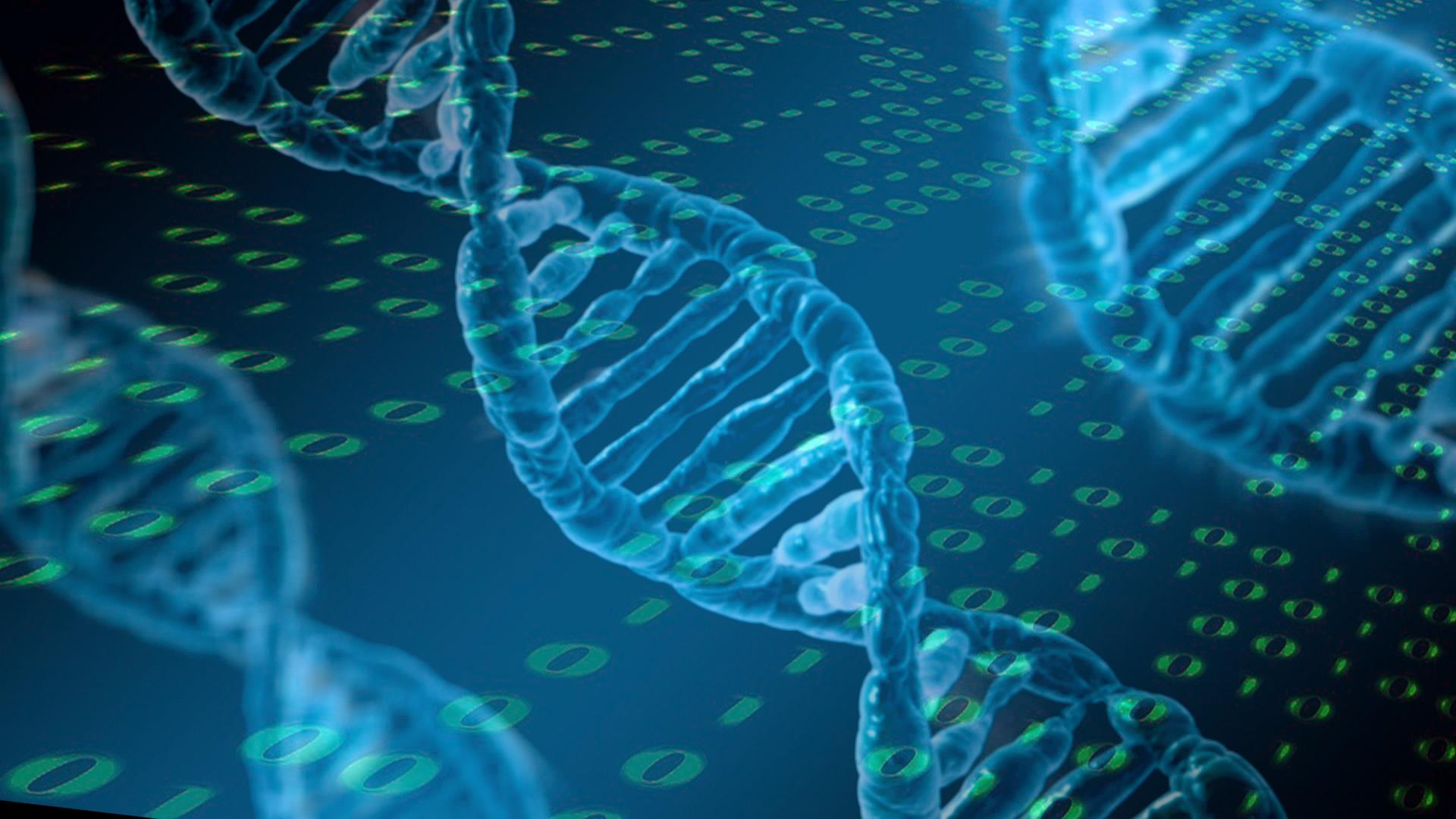 Resultado de imagen de bioinformatica y genomica
